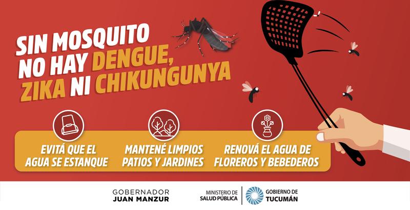 Consejos para prevenir el Dengue, Zika y Chikungunya | Tucumán